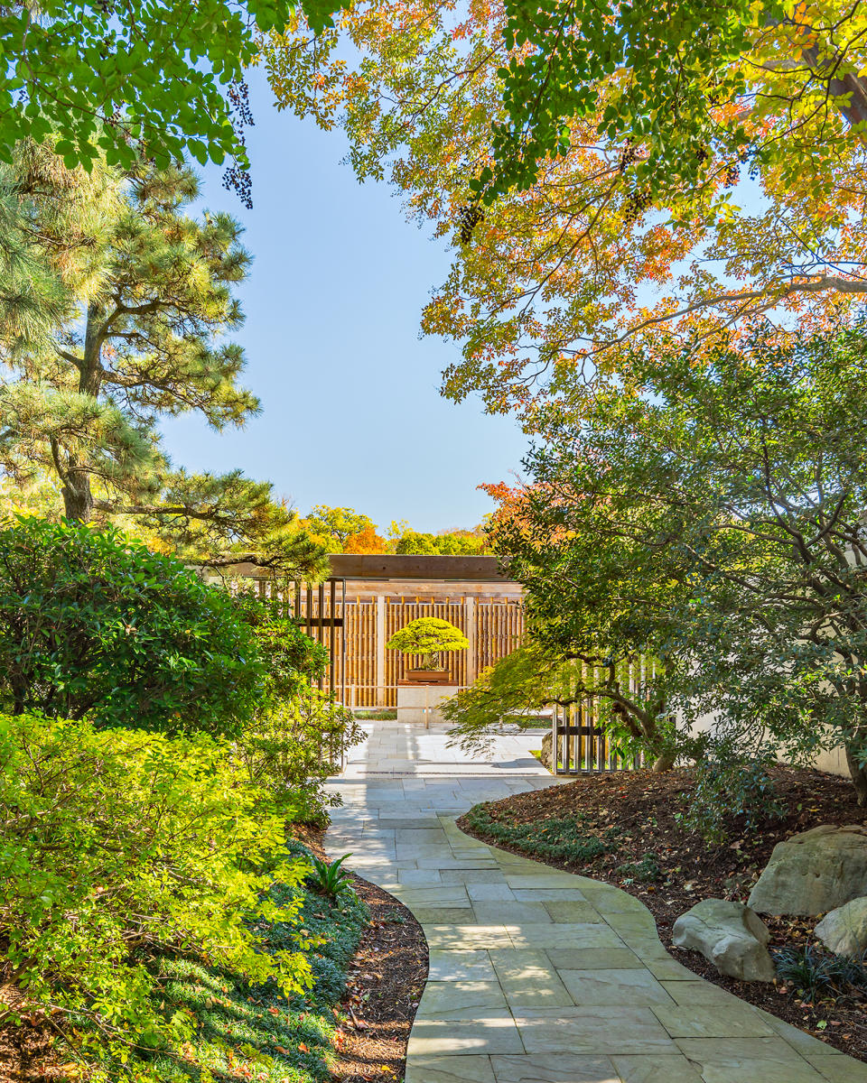 Landscape Architect: Rhodeside & Harwell